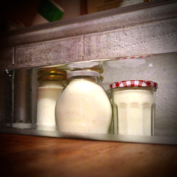 jogurt podvodnjak (1)